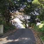 福岡県大野城市の地域墓地での現地確認作業です