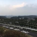 福岡県遠賀町営遠賀霊園へ。玉砂利部分に雑草が生えるお困り解決のお手伝い