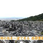 福岡市西部霊園で縦洋型のお墓が完成しました。G654グレー御影石