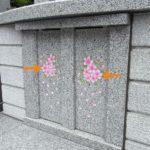 糟屋郡の墓地から宗像の霊園へ。縁(えにし)の文字と綺麗な桜が刻まれた、永代供養の共同墓を移設しました